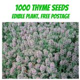 1000 Thyme seeds - Free Post